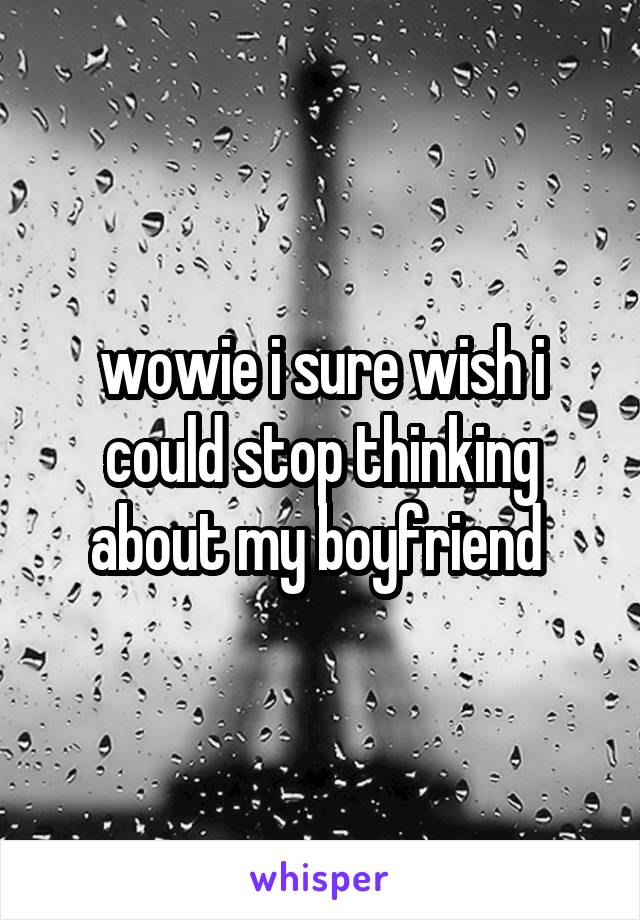 wowie i sure wish i could stop thinking about my boyfriend