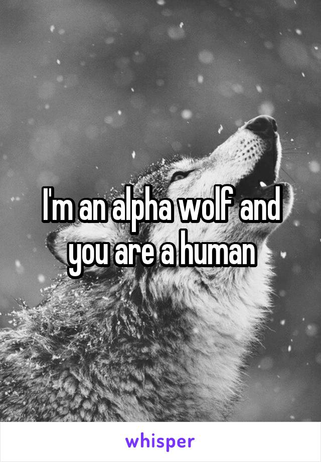 I'm an alpha wolf and you are a human