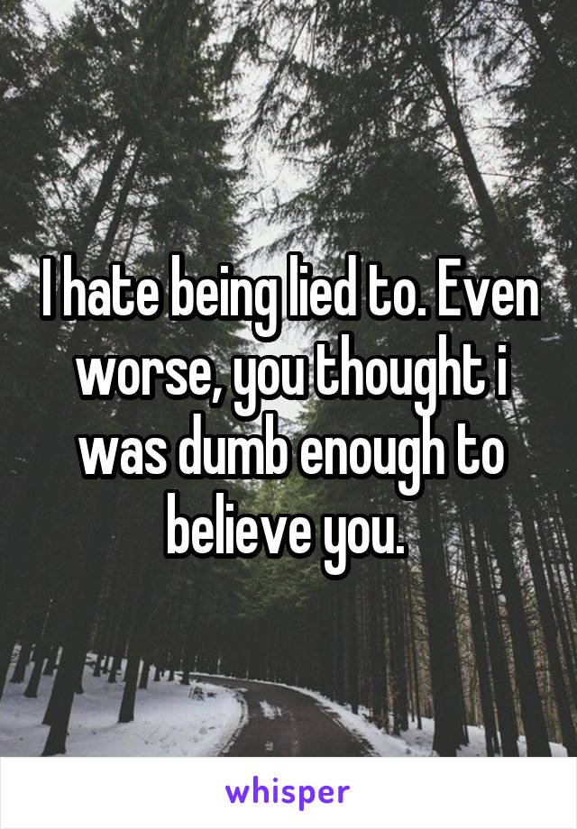 I hate being lied to. Even worse, you thought i was dumb enough to believe you.