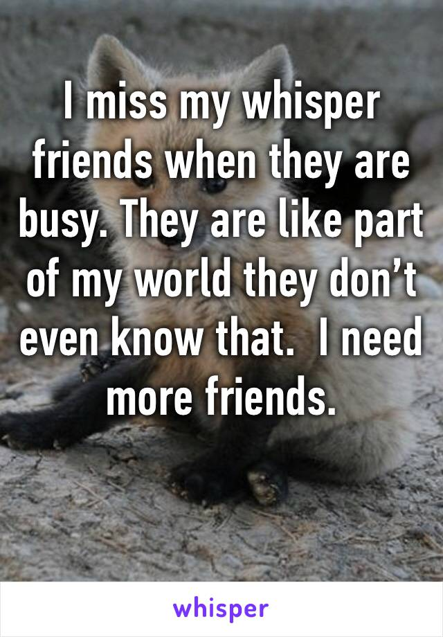 I miss my whisper friends when they are busy. They are like part of my world they don't even know that.  I need more friends.