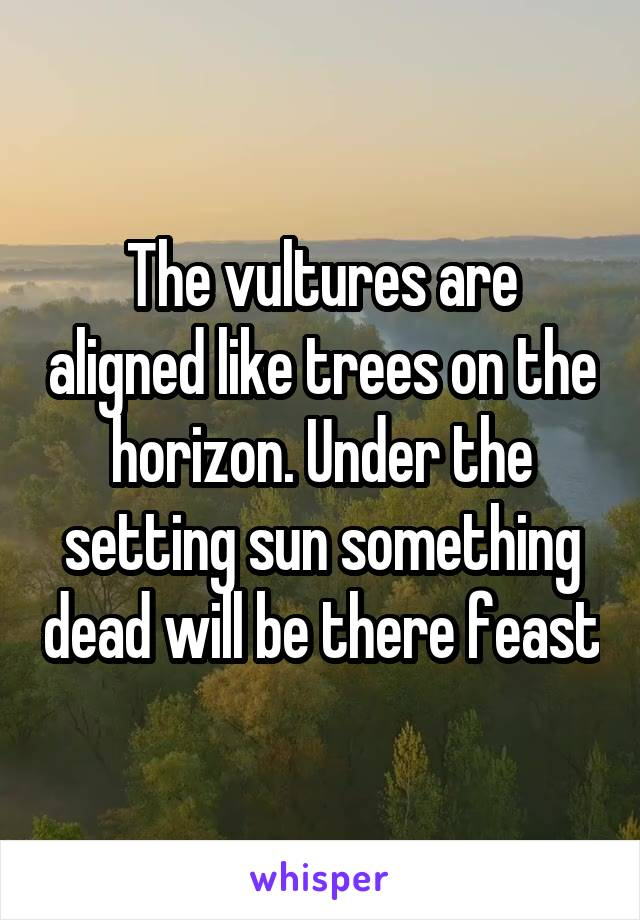 The vultures are aligned like trees on the horizon. Under the setting sun something dead will be there feast