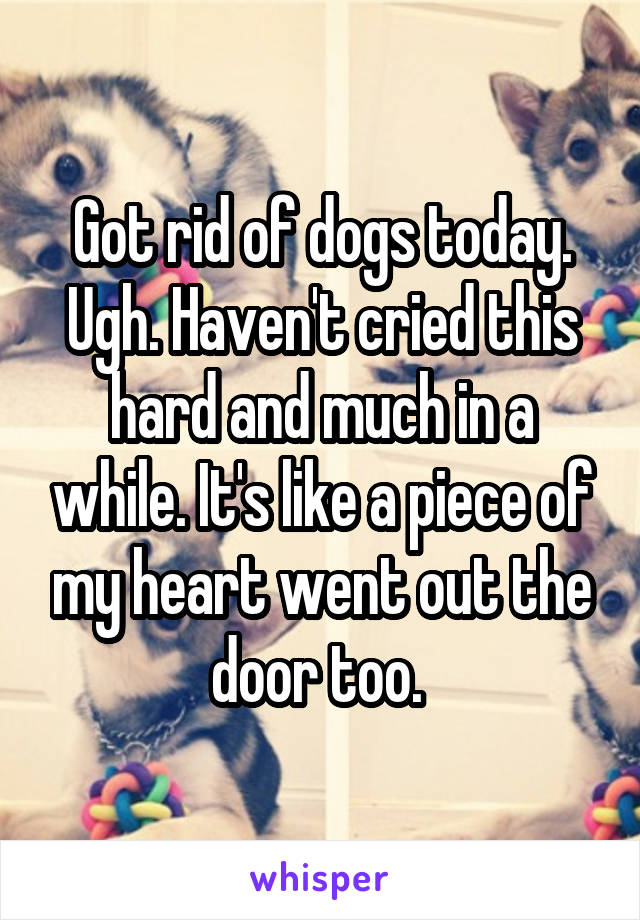 Got rid of dogs today. Ugh. Haven't cried this hard and much in a while. It's like a piece of my heart went out the door too.