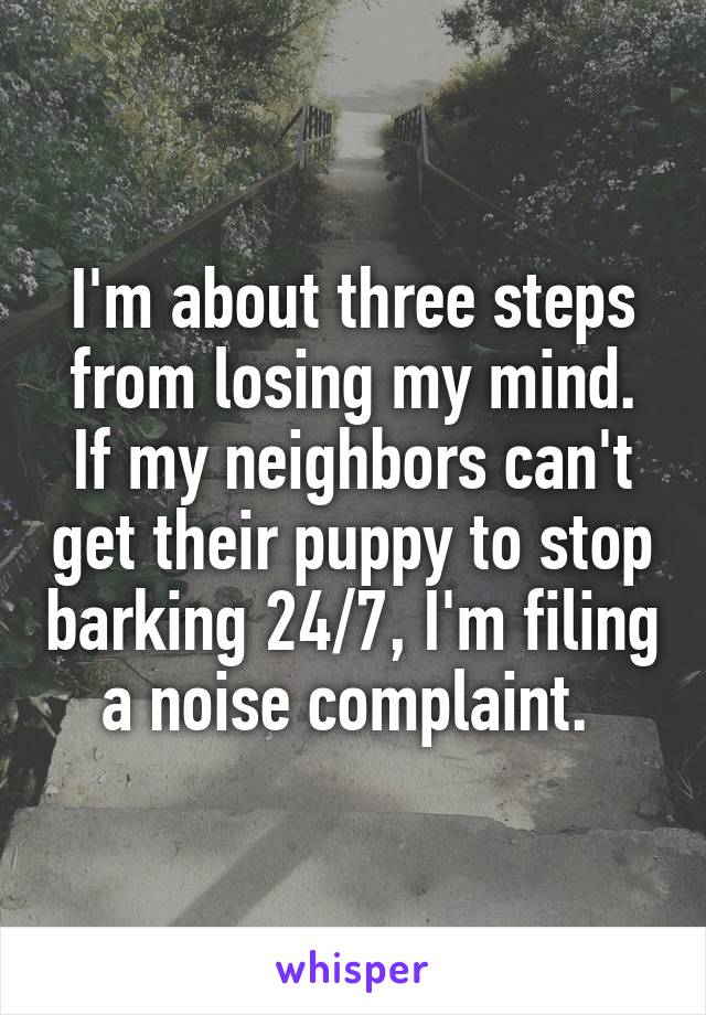 I'm about three steps from losing my mind. If my neighbors can't get their puppy to stop barking 24/7, I'm filing a noise complaint.