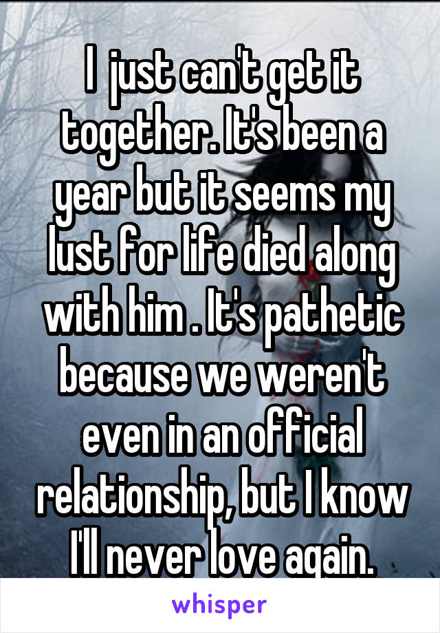 I  just can't get it together. It's been a year but it seems my lust for life died along with him . It's pathetic because we weren't even in an official relationship, but I know I'll never love again.