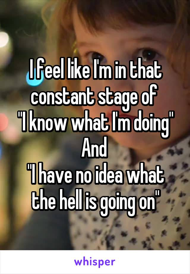 """I feel like I'm in that constant stage of  """"I know what I'm doing"""" And  """"I have no idea what the hell is going on"""""""