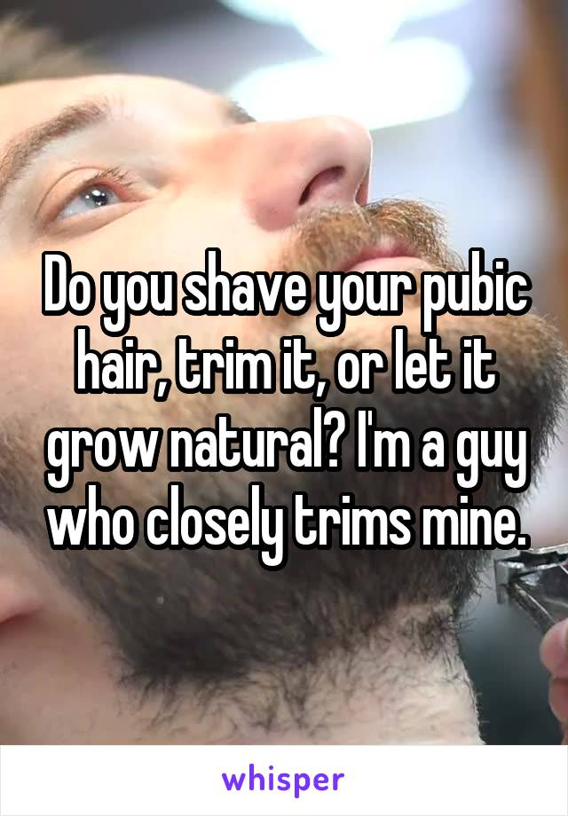 Do you shave your pubic hair, trim it, or let it grow natural? I'm a guy who closely trims mine.