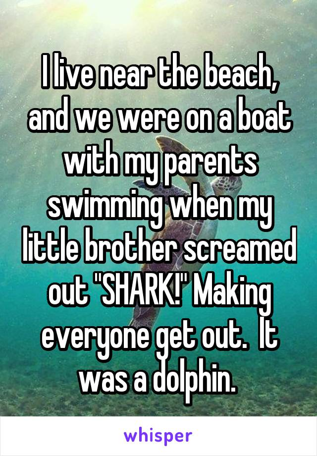 """I live near the beach, and we were on a boat with my parents swimming when my little brother screamed out """"SHARK!"""" Making everyone get out.  It was a dolphin."""