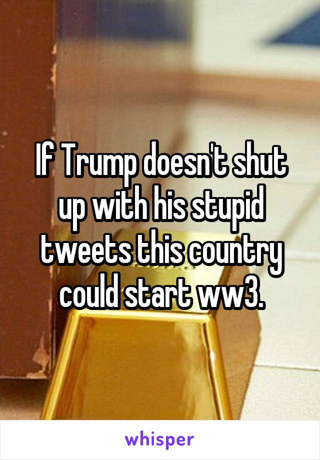 If Trump doesn't shut up with his stupid tweets this country could start ww3.