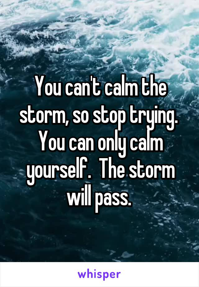 You can't calm the storm, so stop trying.  You can only calm yourself.  The storm will pass.