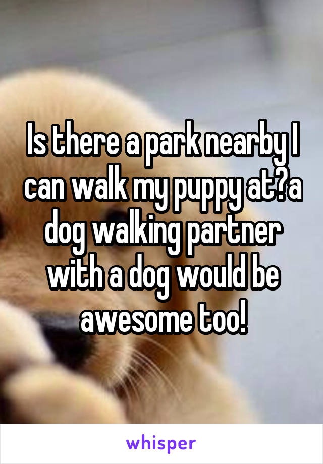 Is there a park nearby I can walk my puppy at?a dog walking partner with a dog would be awesome too!