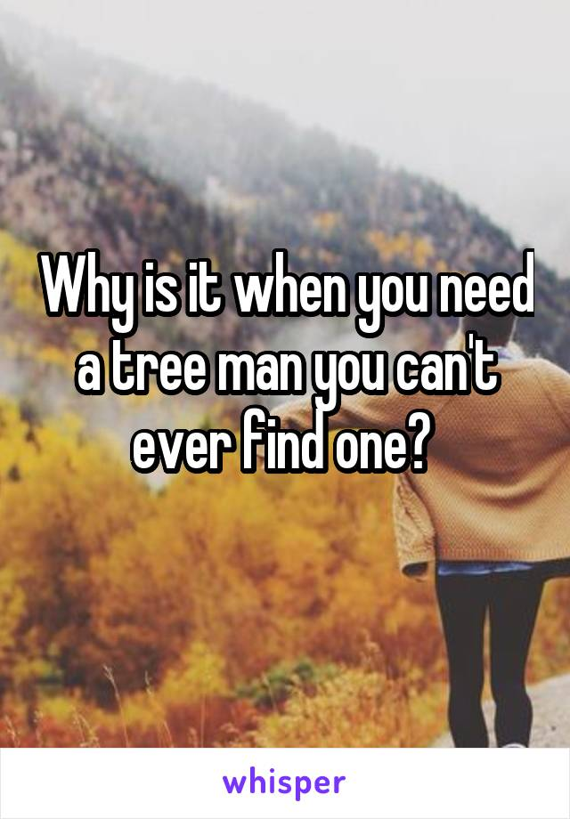 Why is it when you need a tree man you can't ever find one?
