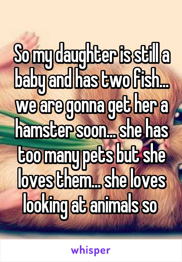 So my daughter is still a baby and has two fish... we are gonna get her a hamster soon... she has too many pets but she loves them... she loves looking at animals so