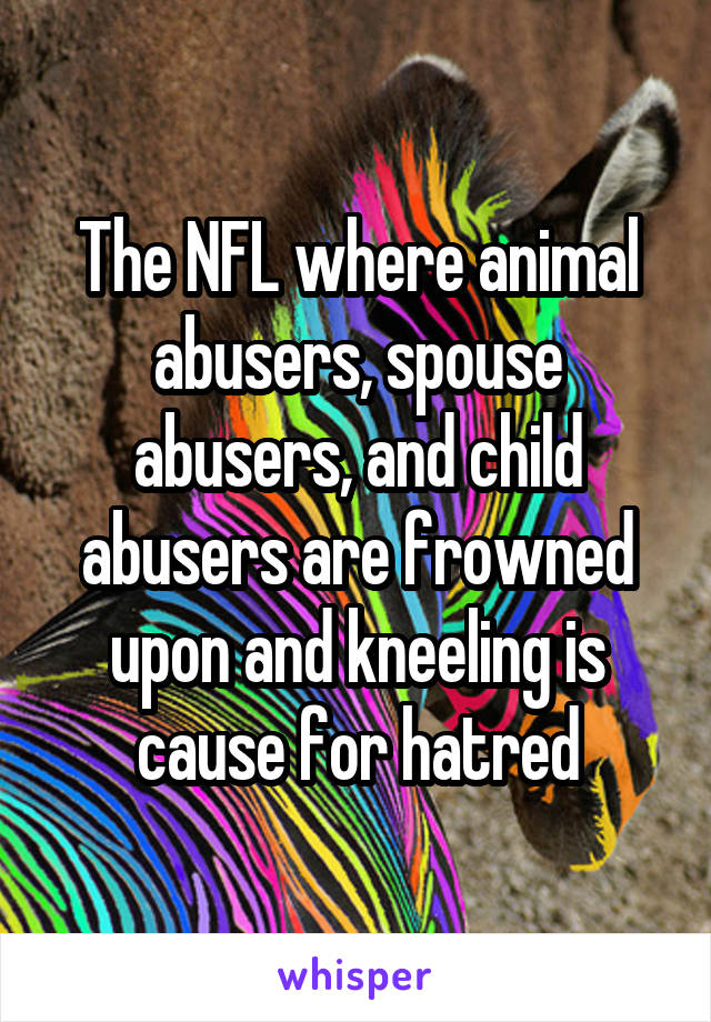 The NFL where animal abusers, spouse abusers, and child abusers are frowned upon and kneeling is cause for hatred