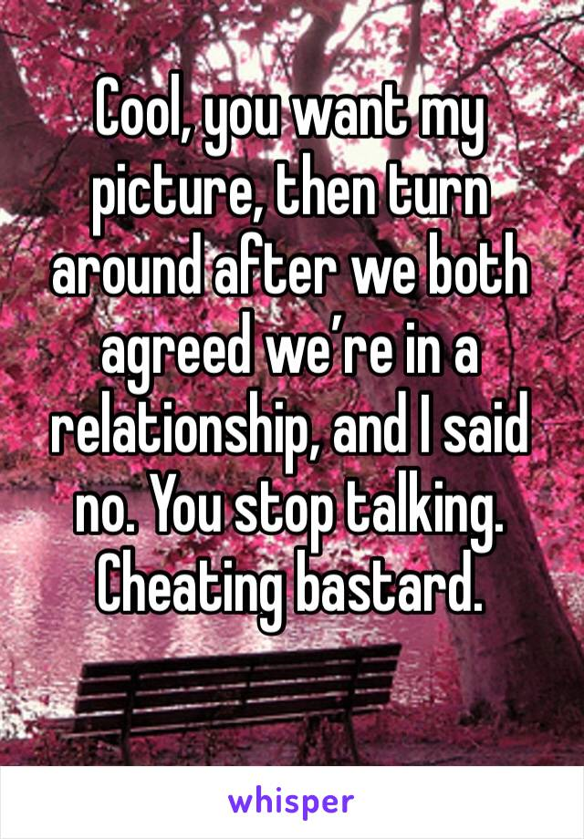 Cool, you want my picture, then turn around after we both agreed we're in a relationship, and I said no. You stop talking. Cheating bastard.