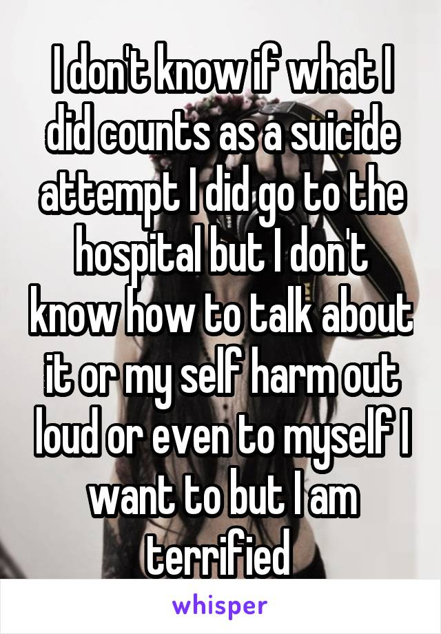 I don't know if what I did counts as a suicide attempt I did go to the hospital but I don't know how to talk about it or my self harm out loud or even to myself I want to but I am terrified