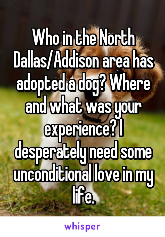 Who in the North Dallas/Addison area has adopted a dog? Where and what was your experience? I desperately need some unconditional love in my life.