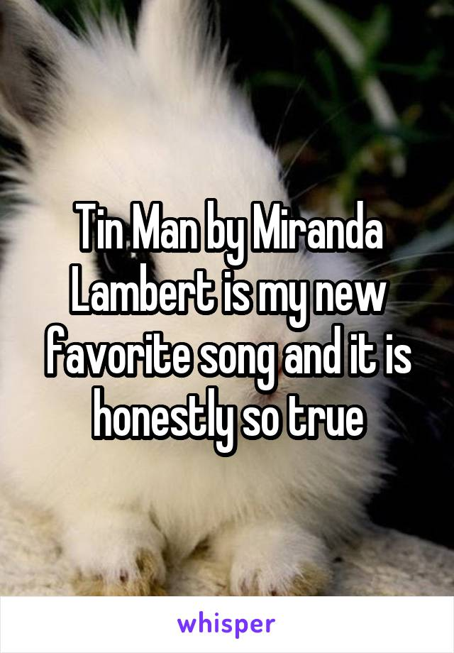 Tin Man by Miranda Lambert is my new favorite song and it is honestly so true