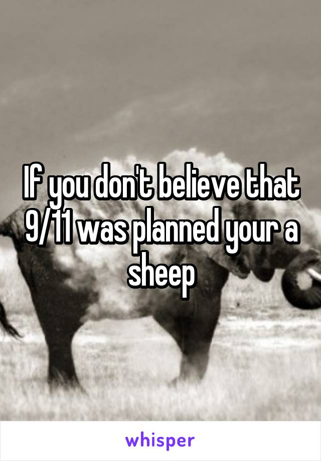 If you don't believe that 9/11 was planned your a sheep