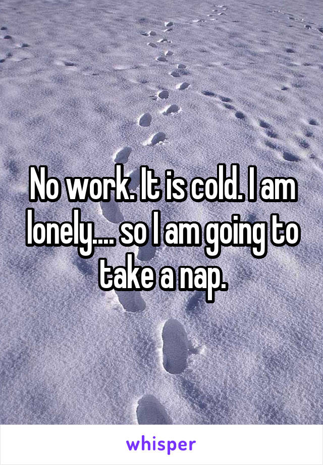 No work. It is cold. I am lonely.... so I am going to take a nap.