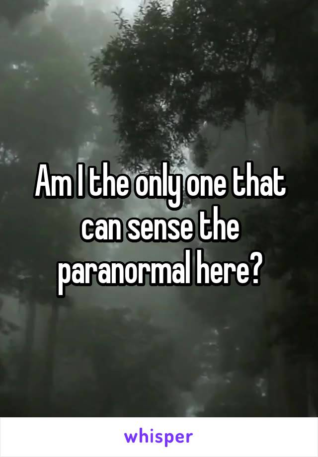 Am I the only one that can sense the paranormal here?