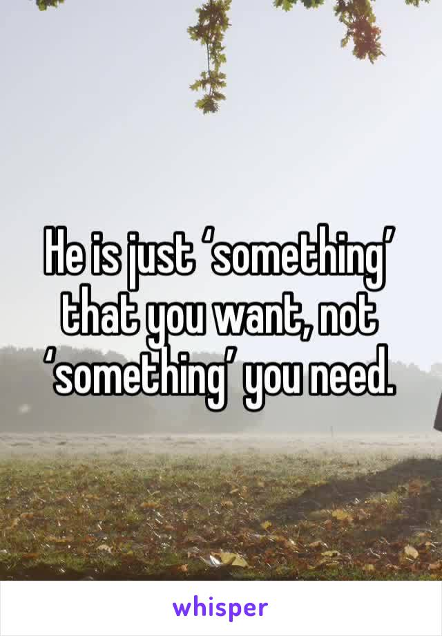 He is just 'something' that you want, not 'something' you need.