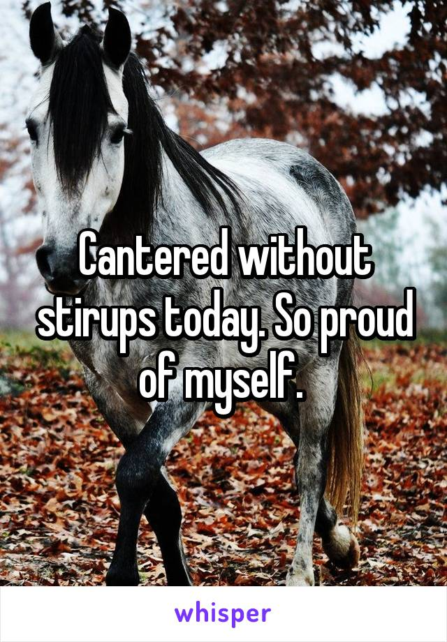 Cantered without stirups today. So proud of myself.