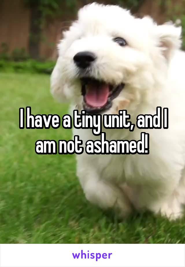 I have a tiny unit, and I am not ashamed!