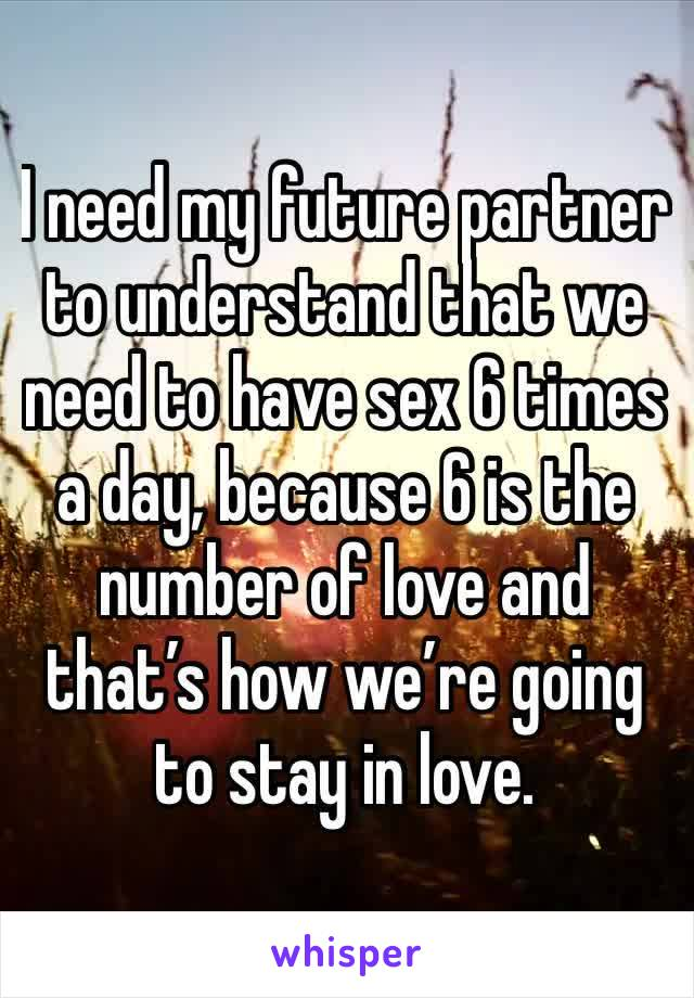 I need my future partner to understand that we need to have sex 6 times a day, because 6 is the number of love and that's how we're going to stay in love.