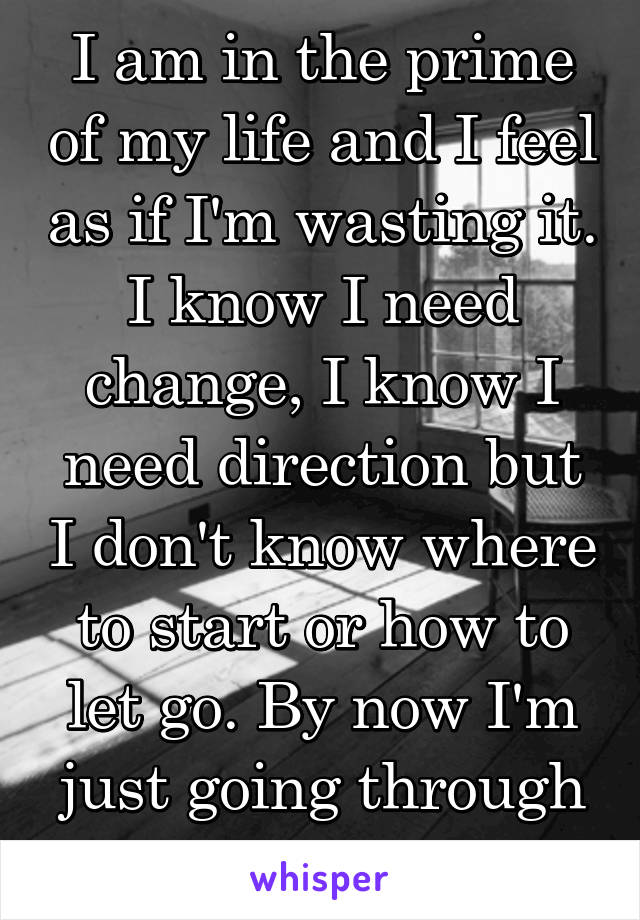 I am in the prime of my life and I feel as if I'm wasting it. I know I need change, I know I need direction but I don't know where to start or how to let go. By now I'm just going through the motions
