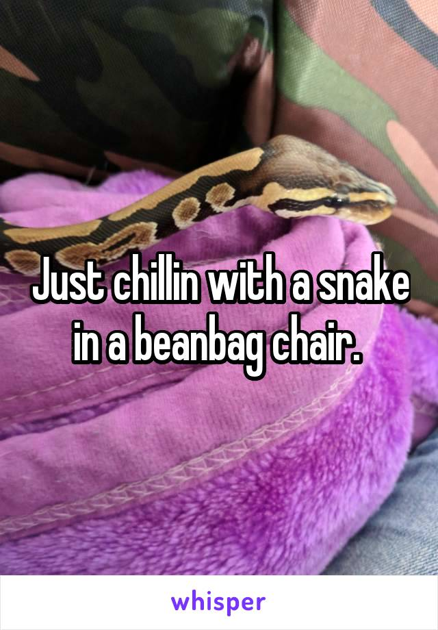 Just chillin with a snake in a beanbag chair.