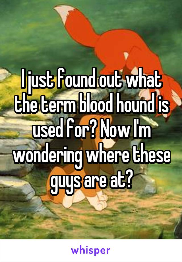 I just found out what the term blood hound is used for? Now I'm wondering where these guys are at?