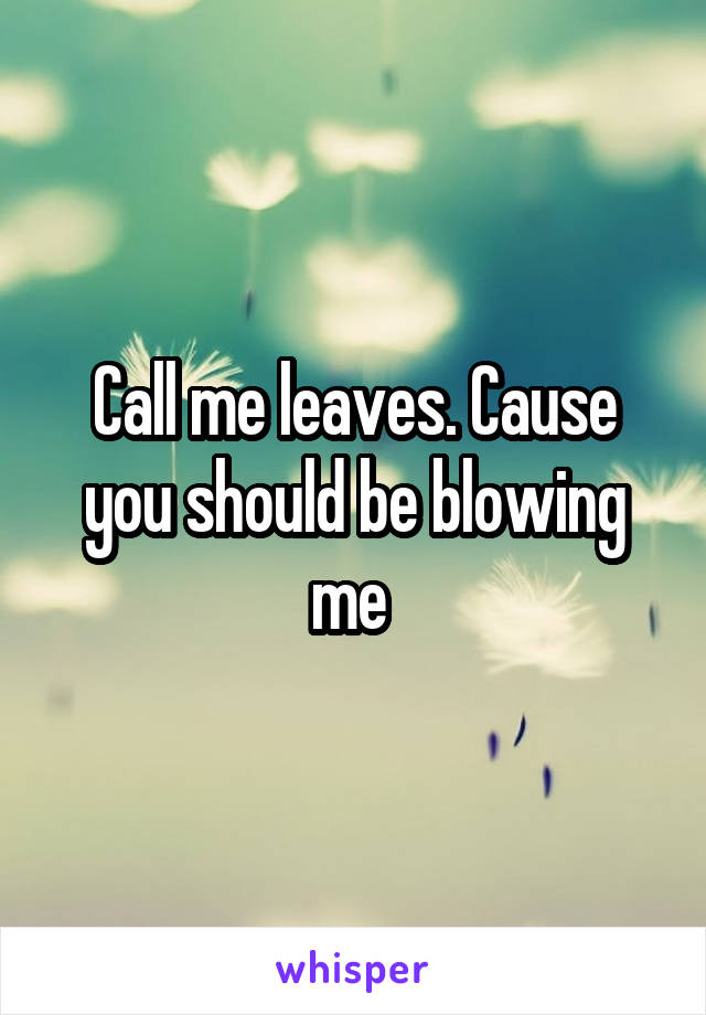 Call me leaves. Cause you should be blowing me