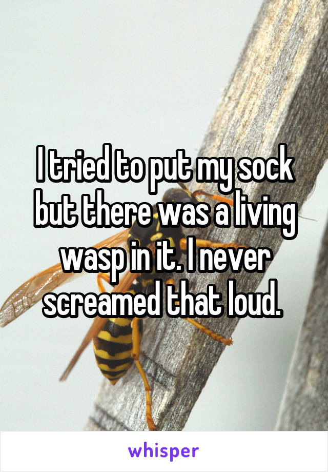 I tried to put my sock but there was a living wasp in it. I never screamed that loud.