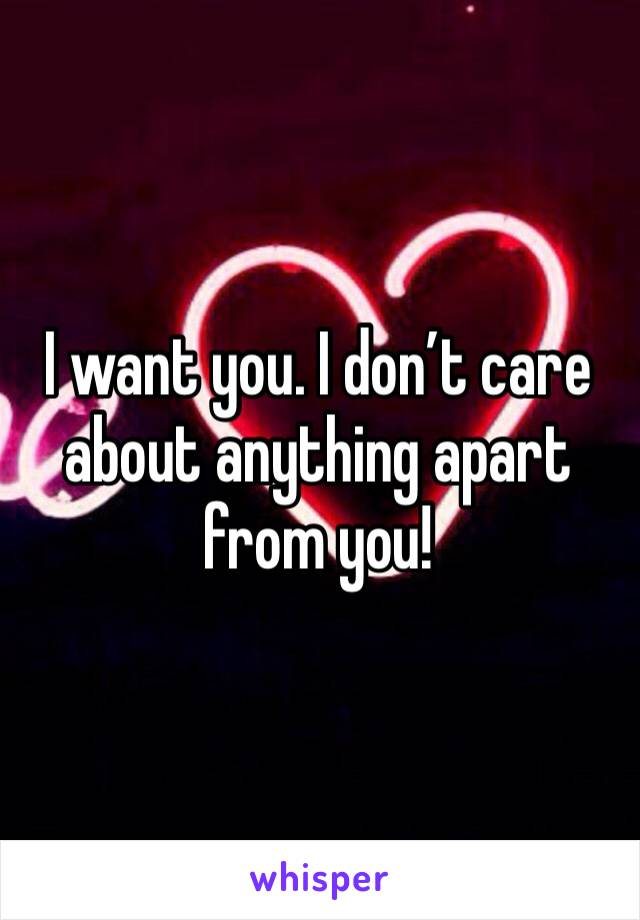 I want you. I don't care about anything apart from you!