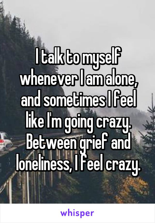 I talk to myself whenever I am alone, and sometimes I feel like I'm going crazy. Between grief and loneliness, I feel crazy.