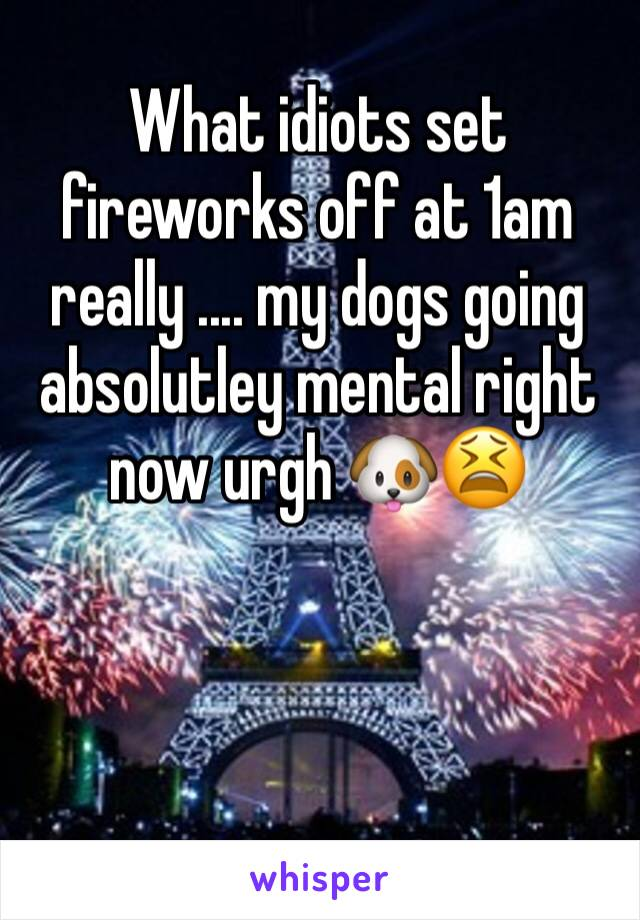 What idiots set fireworks off at 1am really .... my dogs going absolutley mental right now urgh 🐶😫