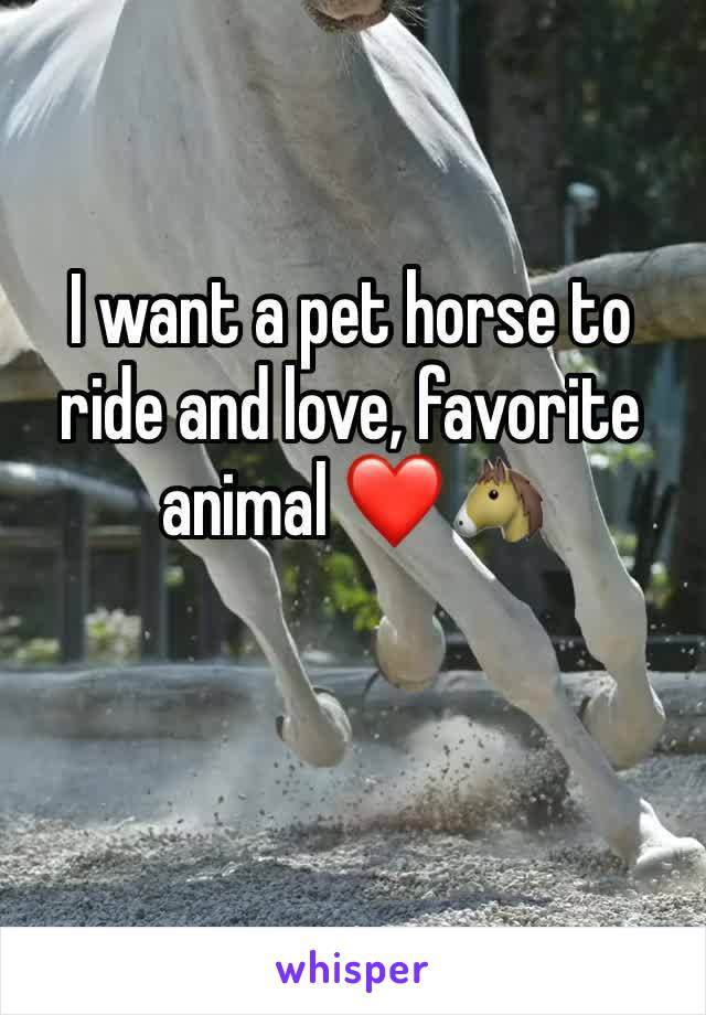 I want a pet horse to ride and love, favorite animal ❤️🐴