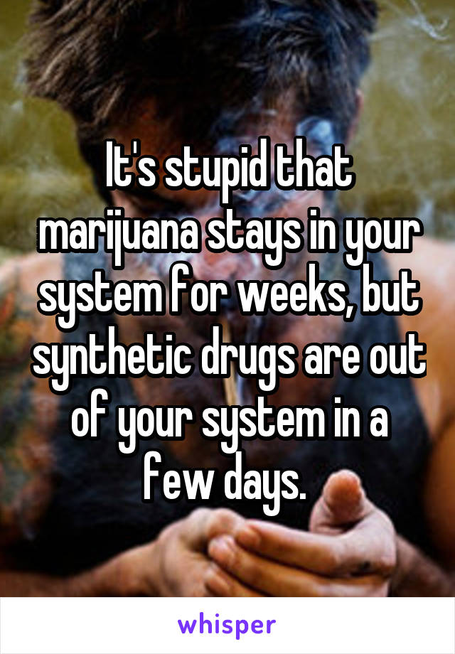 It's stupid that marijuana stays in your system for weeks, but synthetic drugs are out of your system in a few days.