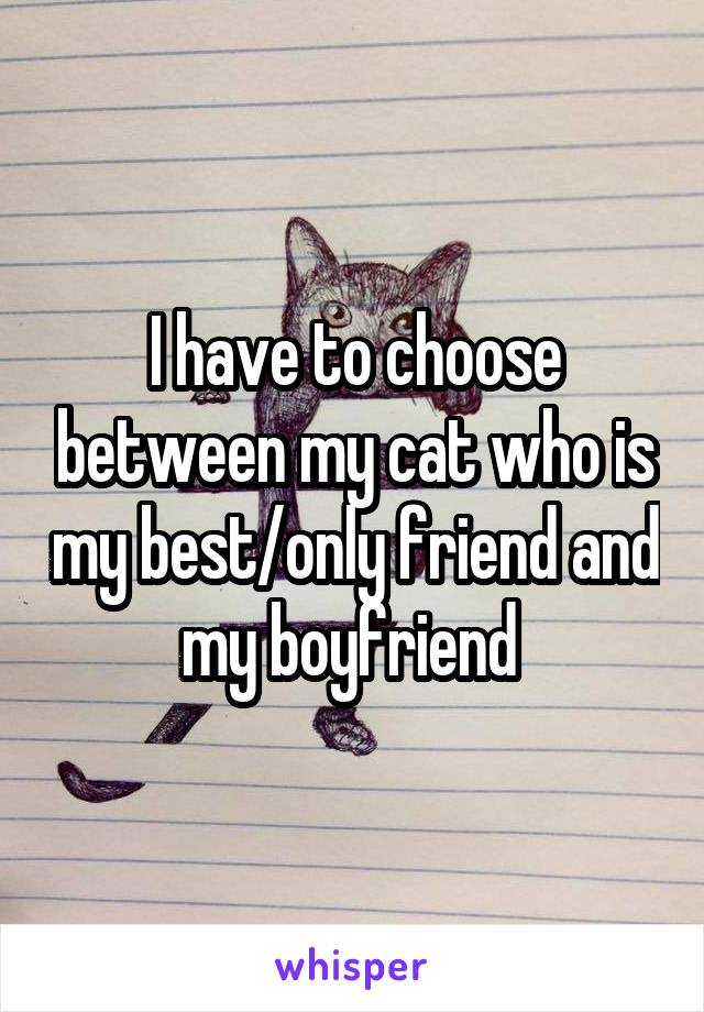 I have to choose between my cat who is my best/only friend and my boyfriend