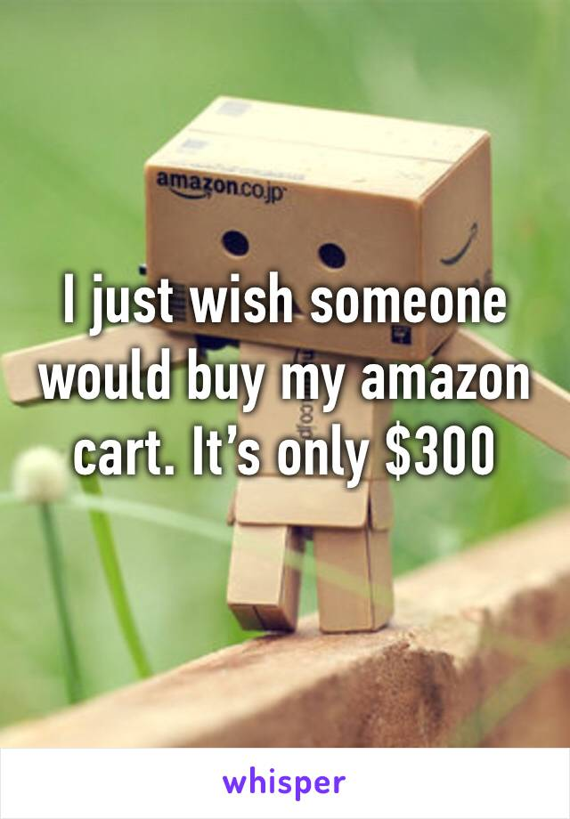 I just wish someone would buy my amazon cart. It's only $300