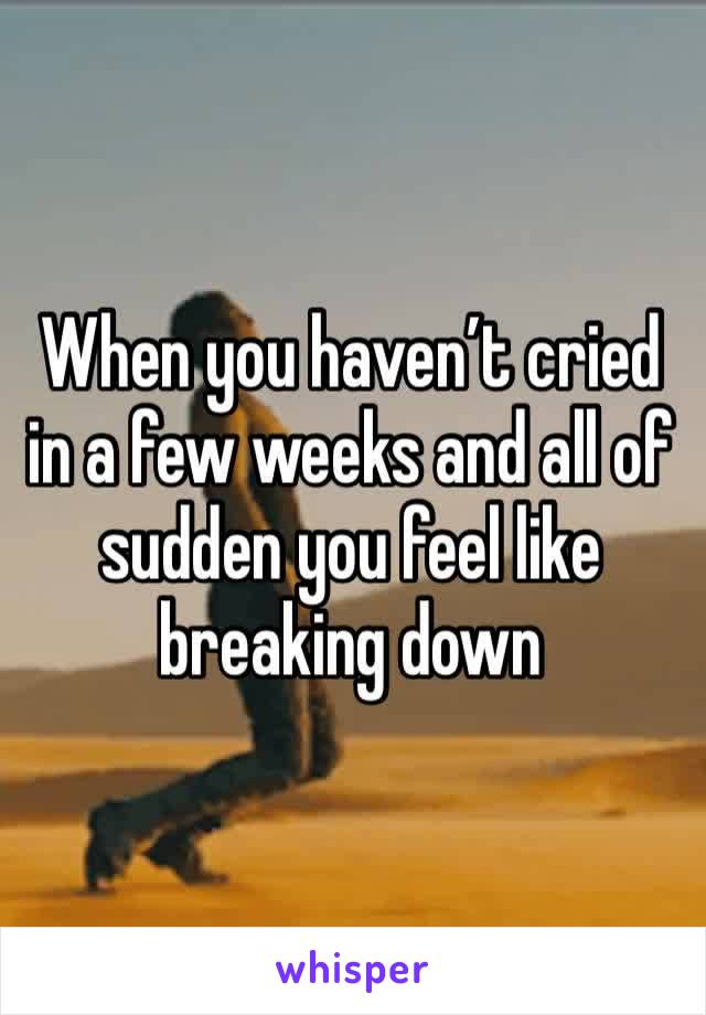 When you haven't cried in a few weeks and all of sudden you feel like breaking down