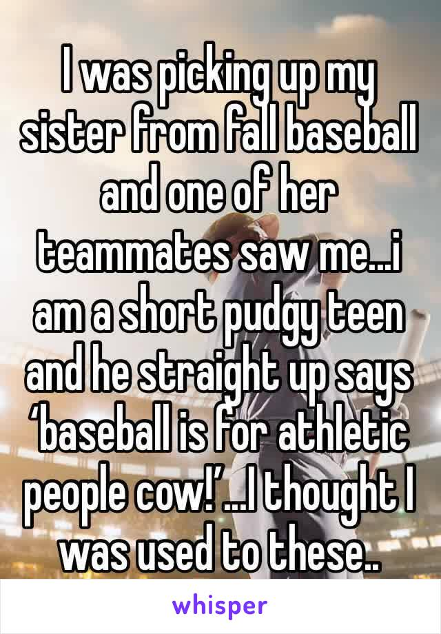 I was picking up my sister from fall baseball and one of her teammates saw me...i am a short pudgy teen and he straight up says 'baseball is for athletic people cow!'...I thought I was used to these..