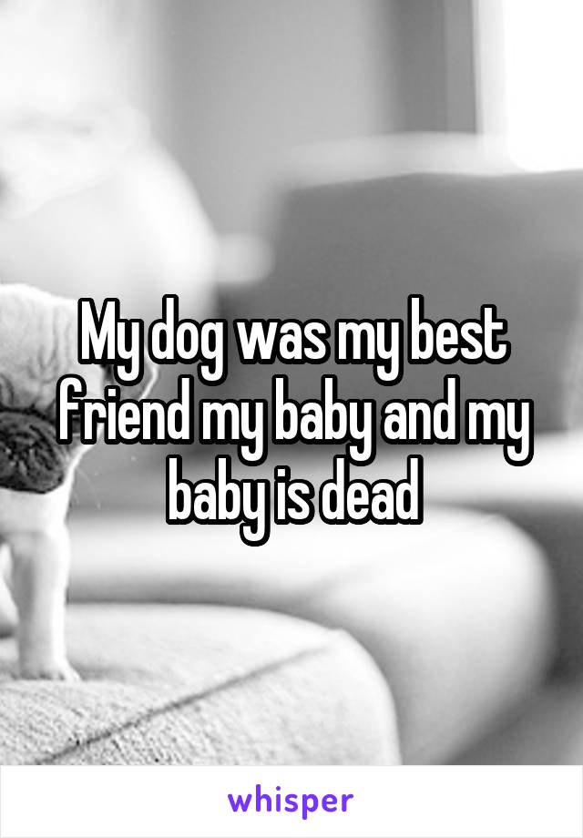 My dog was my best friend my baby and my baby is dead