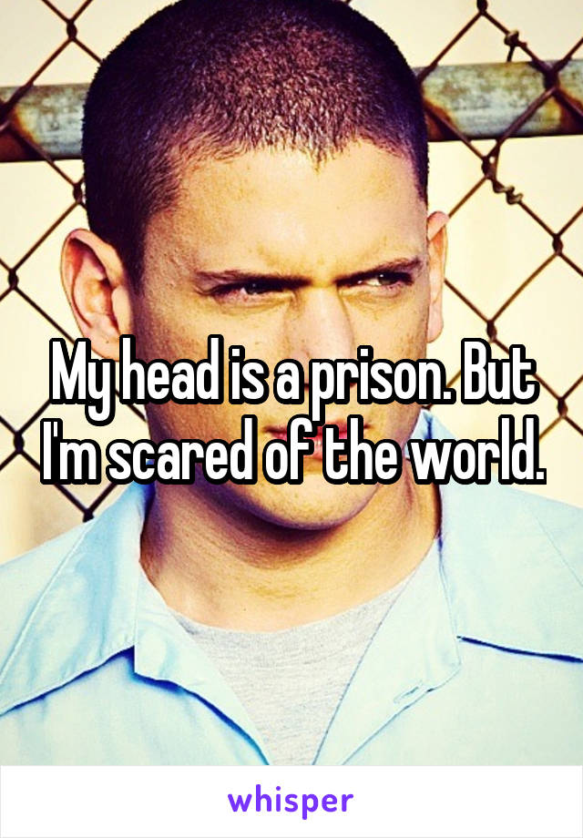 My head is a prison. But I'm scared of the world.