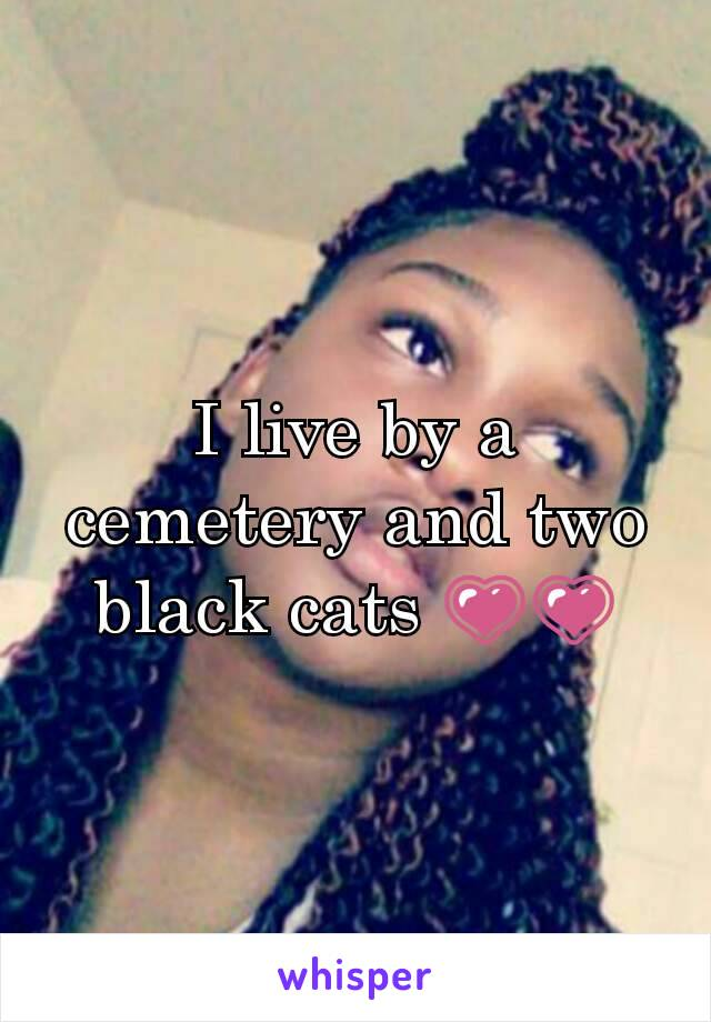 I live by a cemetery and two black cats 💗💗