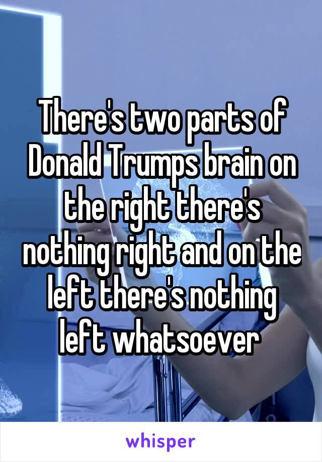 There's two parts of Donald Trumps brain on the right there's nothing right and on the left there's nothing left whatsoever