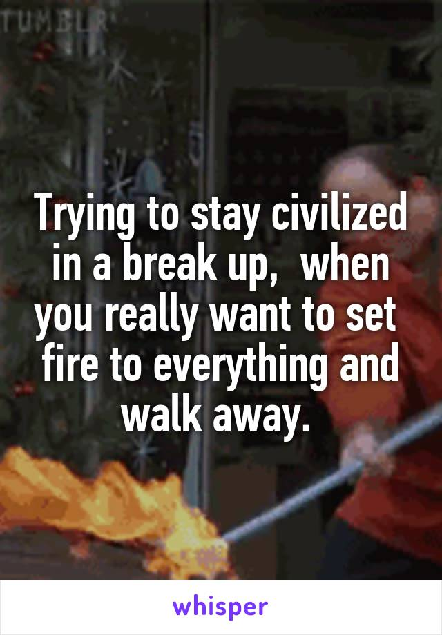 Trying to stay civilized in a break up,  when you really want to set  fire to everything and walk away.