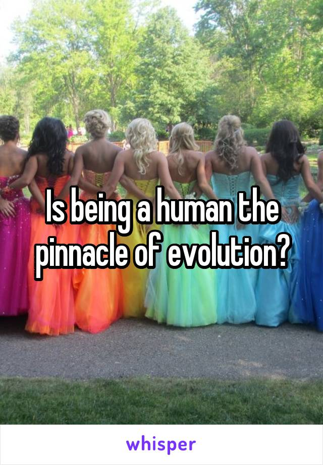Is being a human the pinnacle of evolution?
