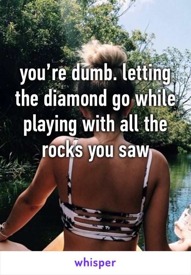 you're dumb. letting the diamond go while playing with all the rocks you saw