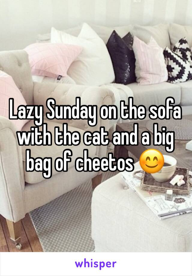 Lazy Sunday on the sofa with the cat and a big bag of cheetos 😊